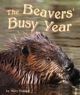 BeaversBusy_187