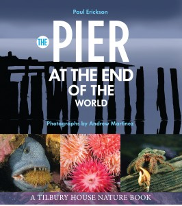 The-pier-at-the-end-of-the-world-266x300